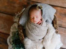___Newborn photo