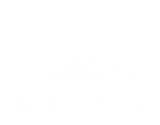 KALMA_white_Transparent.png