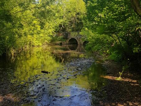 Trittiford Park, Yardley Wood