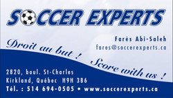 Soccer experts