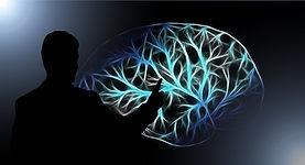 brain-3141247_1920.jpg