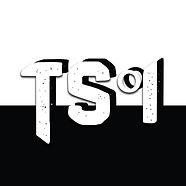 Timo logo.jpg