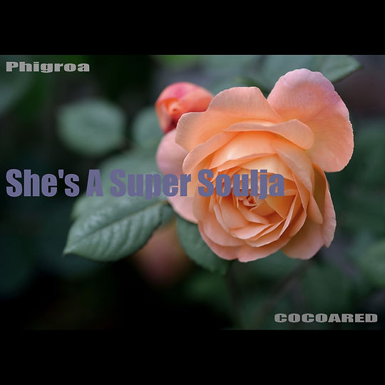 She's A Super Soulja (brown sugar version)