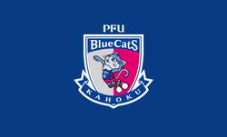 12.Blue Pride
