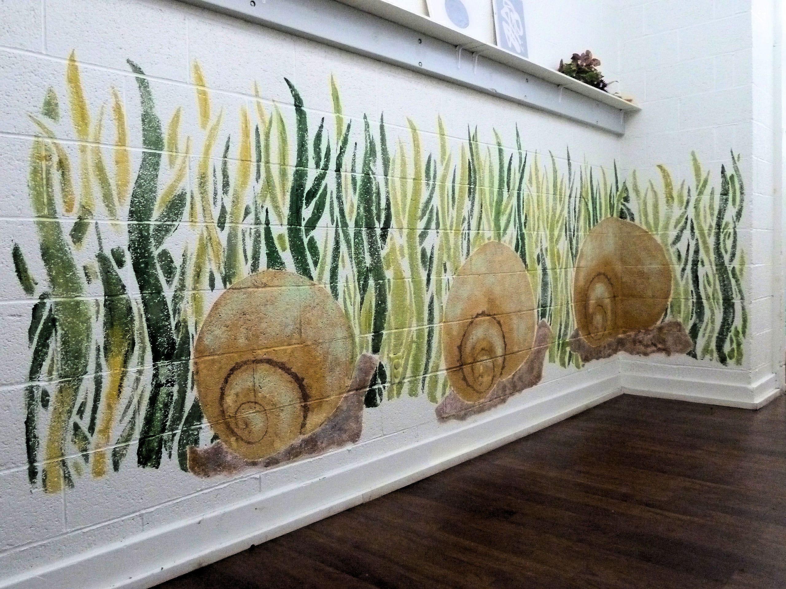 Snail Mural SJECC Summer 2011 (55)-min