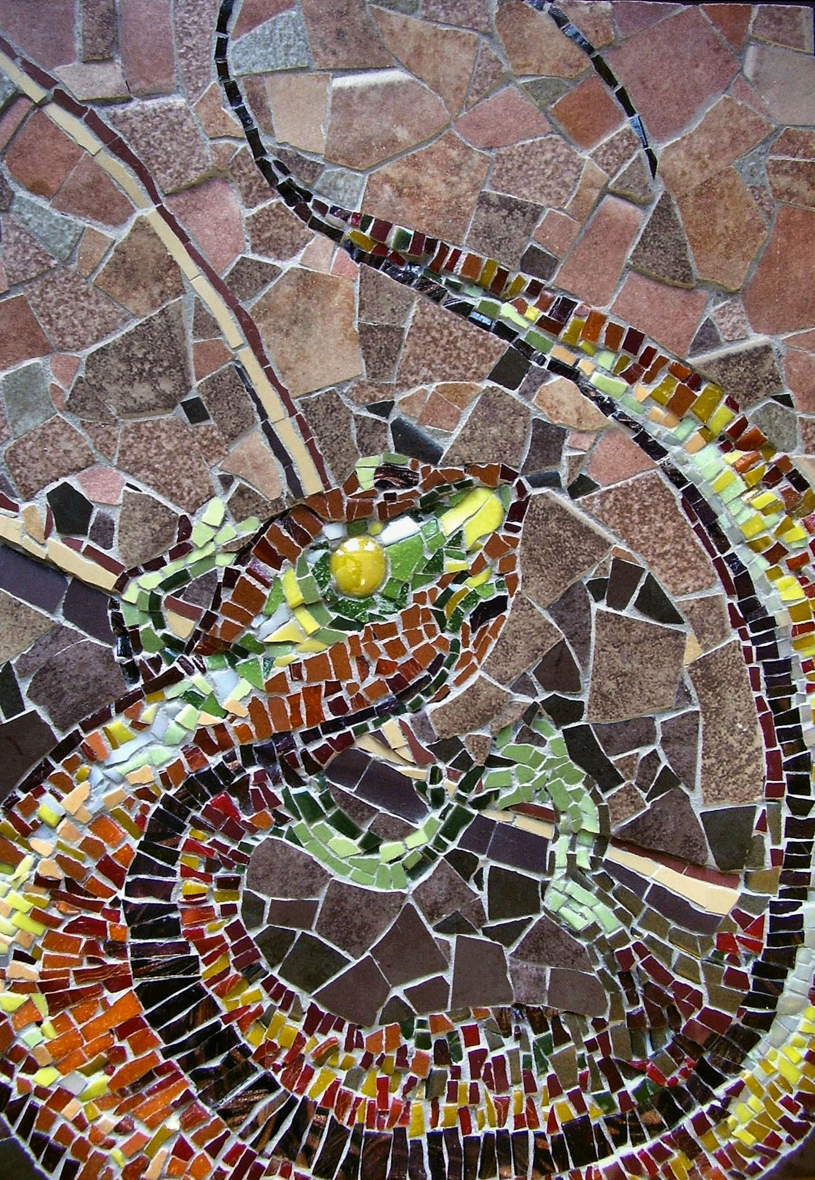 Salamander 2008-min
