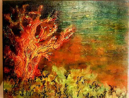 Gnarled Tree- Acrylic on Canvas 10x8