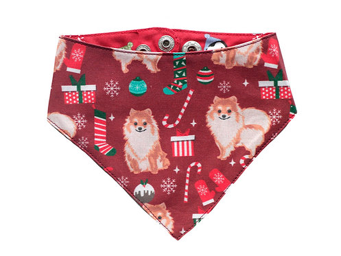 Bandana Christmas Spitz