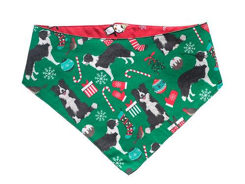Bandana Christmas Border Collie
