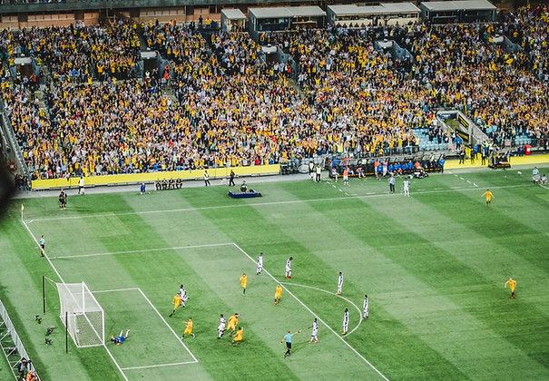Level 2 Understanding Stewarding at Spectator Events