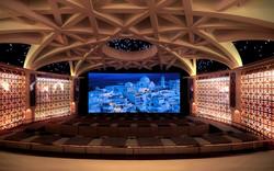 ice-cinema5-platinumice