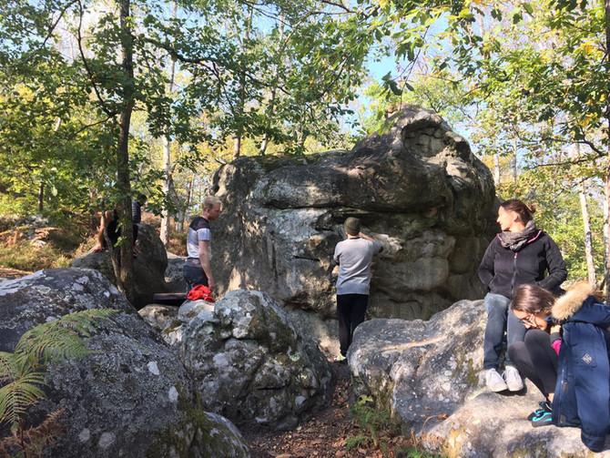 Sortie à Fontainebleau, secteur Beauvais Nainville, octobre 2020