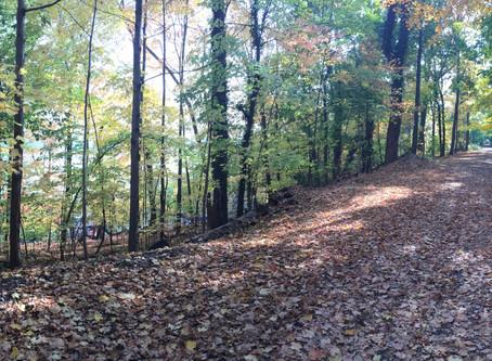 Race Review - South Nyack 10 Miler, a Race Along the Hudson