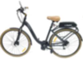 Bike Groove URBAN convertida c TSDZ2 e B