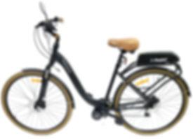 Bike URBAN Convertida Com Bafang 500w e