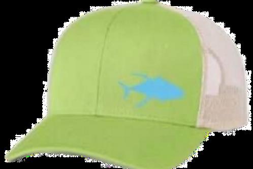 Tuna Series Green and Blue