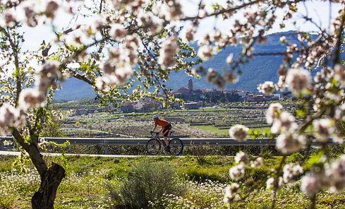 ©Patronat de Turisme Diputació de Tarragona - Ulldemolins-min.jpg