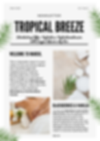 Tropical Breeze News (3).png