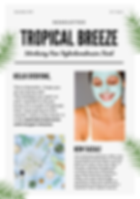 tropical breeze December Newsletter