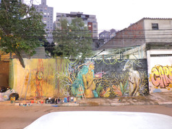 Muro na Rua da Vai Vai- Bixiga- SP