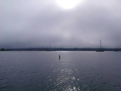 newport fog morning.jpg