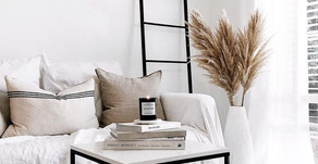 All things Pampas Grass