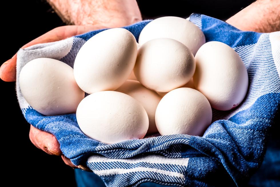 Food_Egg-6.jpg