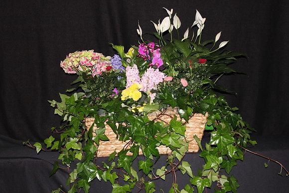 Spring Flowering Garden