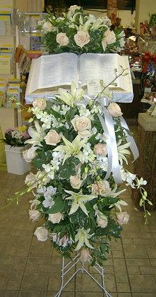 Bible All Whites