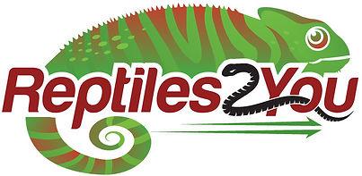 reptile, shipping, reptile shipping, reptiles2you, gecko shipping