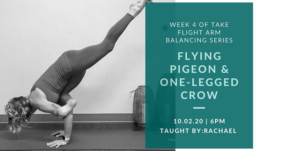 Week 4 of Take Flight Arm Balancing Series: Flying Pigeon & One-legged Crow
