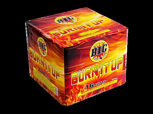 BURN IT UP