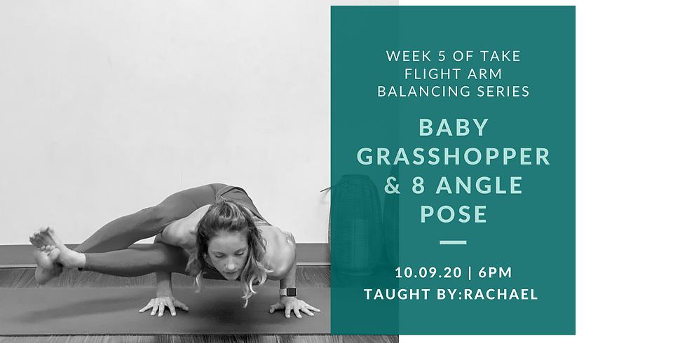Week 5 of Take Flight Arm Balancing Series: Baby Grasshopper & 8 Angle Pose