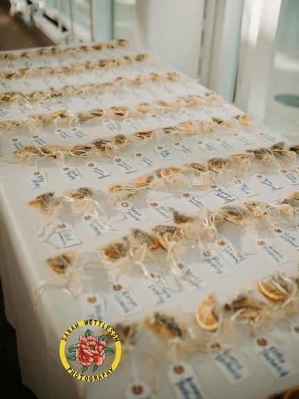 josh_shani_wedding_raws01851_websize.jpg