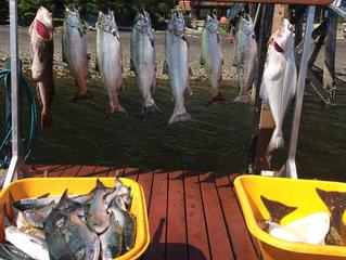 Craig Alaska Fishing Report