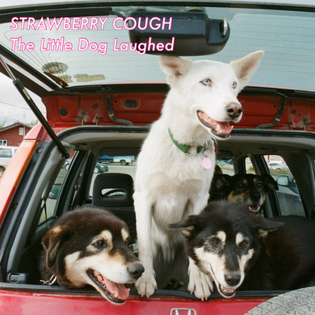 """EP Release: """"The Little Dog Laughed"""" by Strawberry Cough"""