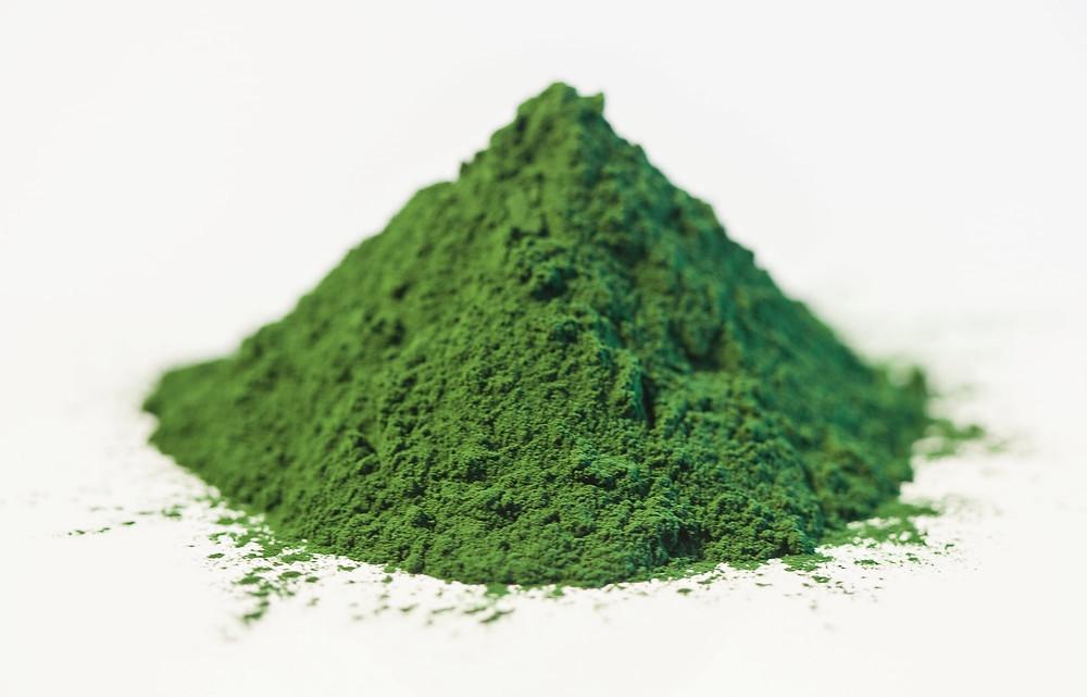 chlorella suplement