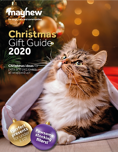 MAYHEW-Christmas-guide-2020.png