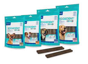 NEW VEGGIEDENT®FR3SH™ Innovative triple action technology to target bad breath.