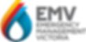 EMV logo.png