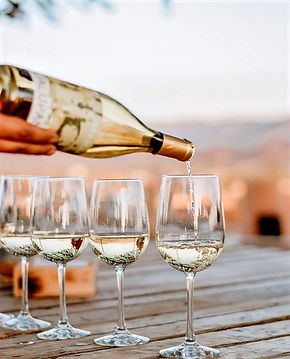 Nuestras bodegas de vinos mexicanos