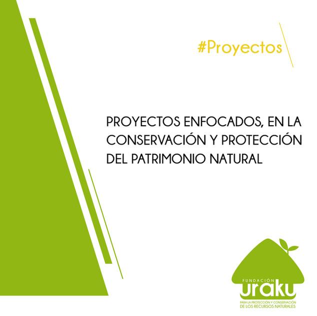 ProyectoTexto
