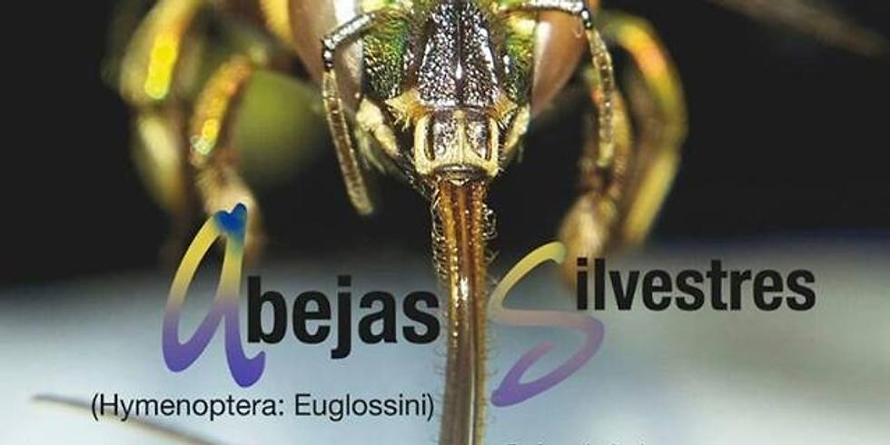 CURSO: BIOLOGÍA, ECOLOGÍA Y TAXONOMÍA DE ABEJAS SILVESTRE (Hymenoptera: Euglossini)