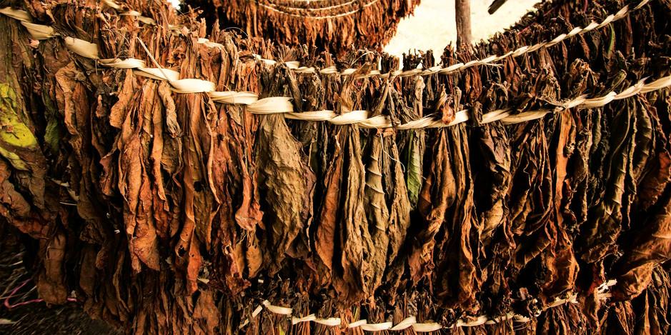 El-Tabaco2-pan_edited.jpg