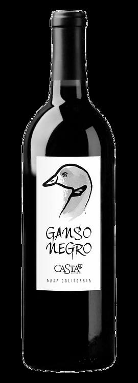Ganso Negro