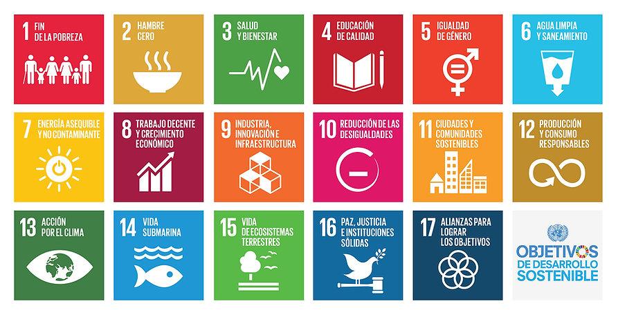 S-SDG-Poster_A4.jpg