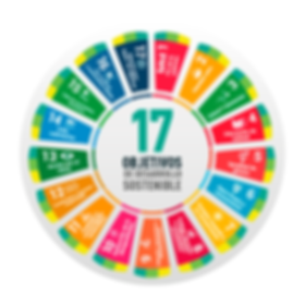 objetivos-del-desarrollo-sostenible-.png
