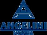 logo_amgelini_NEW.png