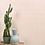 Thumbnail: Bamboo Blush Porcelain
