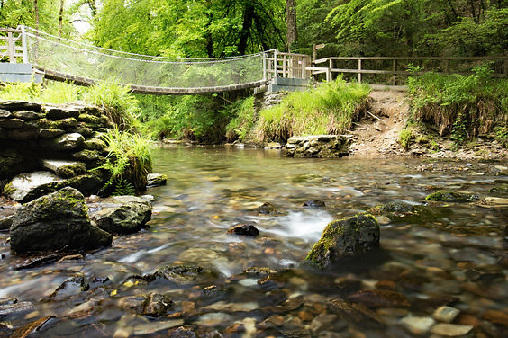 Lydford Gorge inc rope bridge by Paul Norris Photo